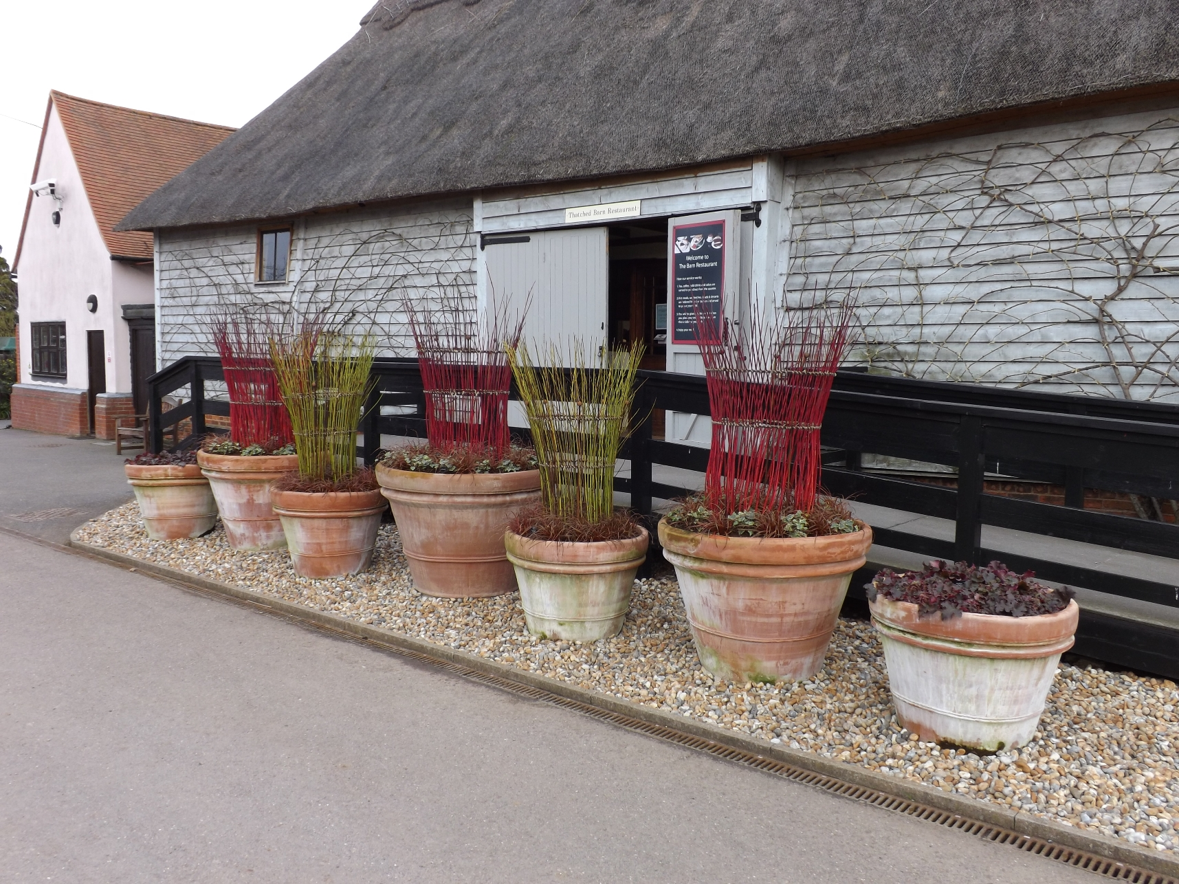 Cornus baskets outside the excellent café