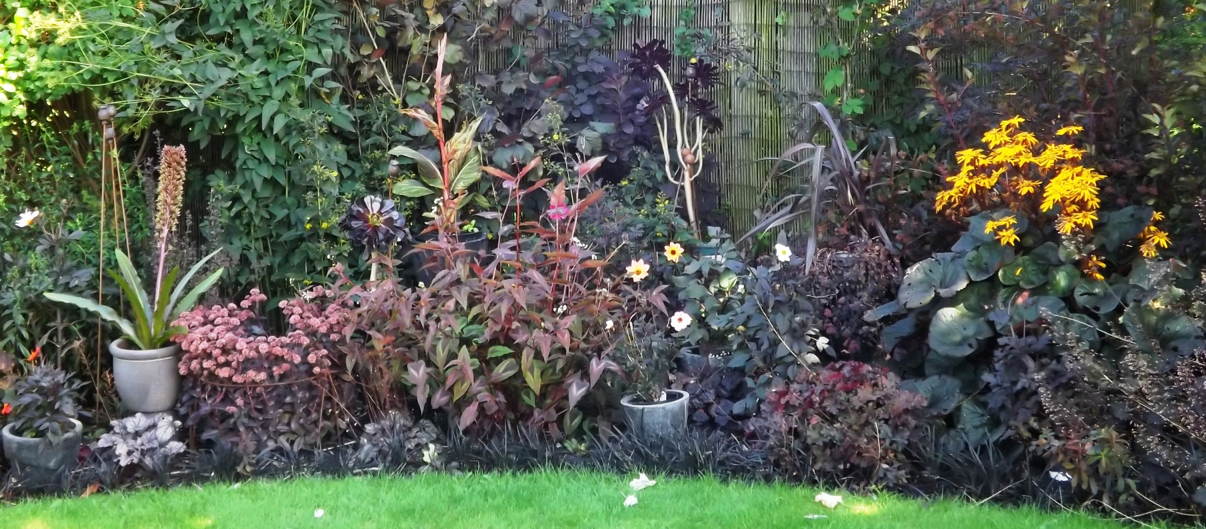 black garden 3 smaller