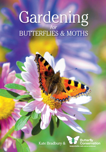 gardening-for-butterflies-and-moths
