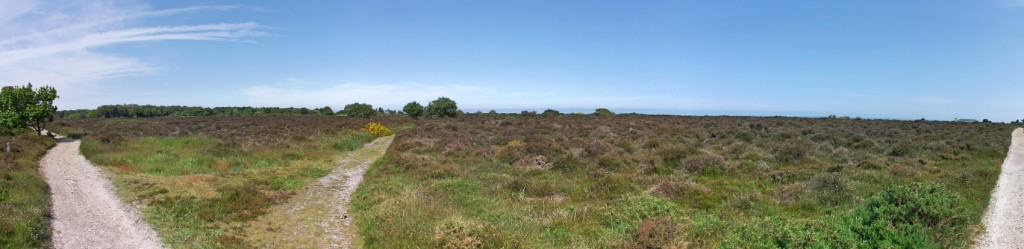 Panoramic view of Dunwich Heath