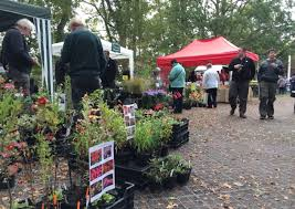 Lopham Fen plant fair (Photo credit: Diss Mercury)