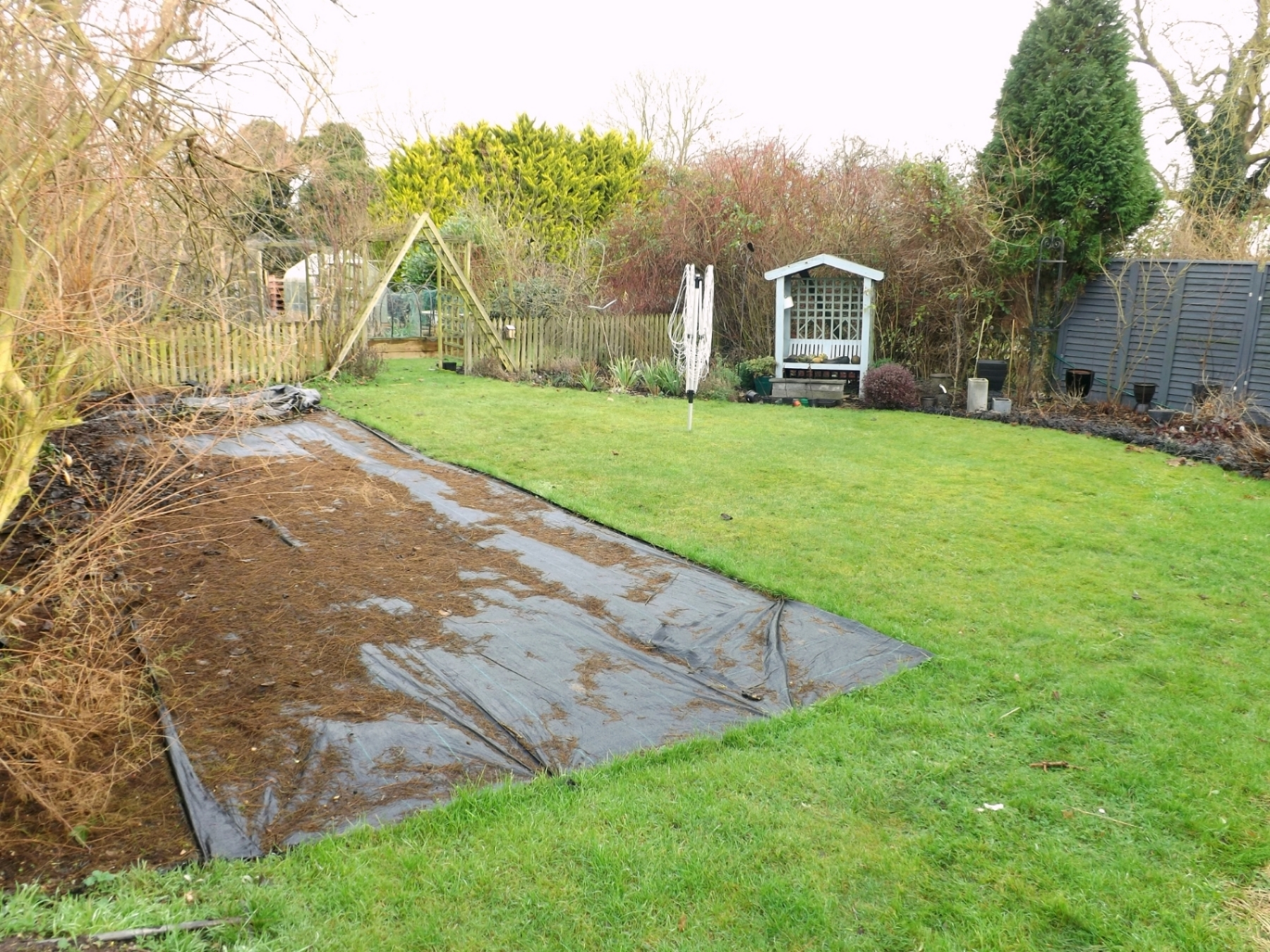 All three beds in the middle garden